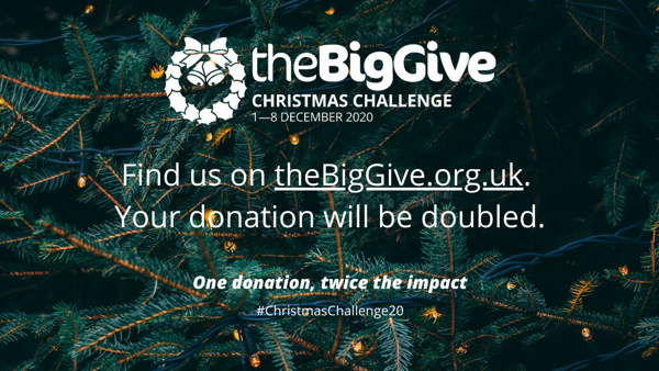 Picture of the Big Give