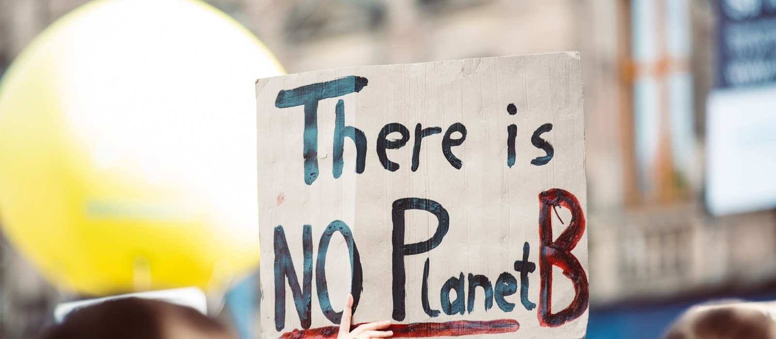 Picture of someone holding sign saying There is no planet B